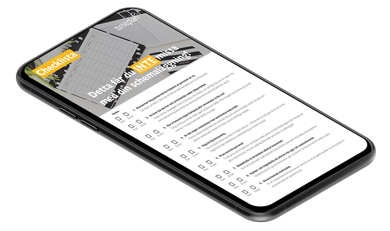 Webinar - Timeplan på 30 minuter